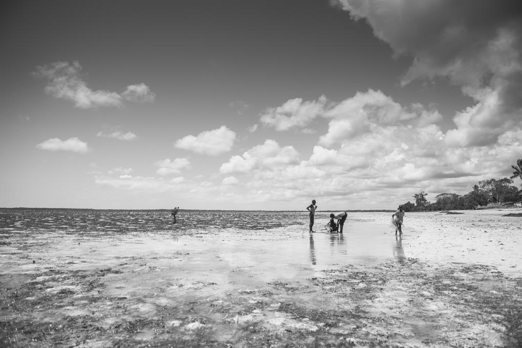 Zanzibar – Chwaka Bay